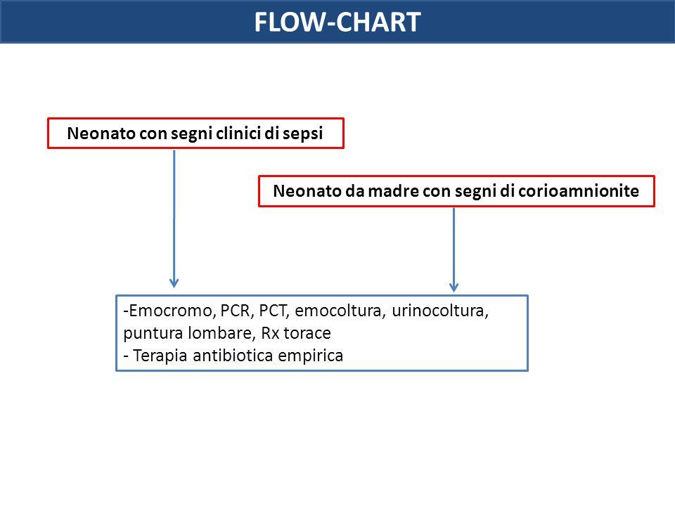 FLOW-CHART Neonato con segni clinici di sepsi