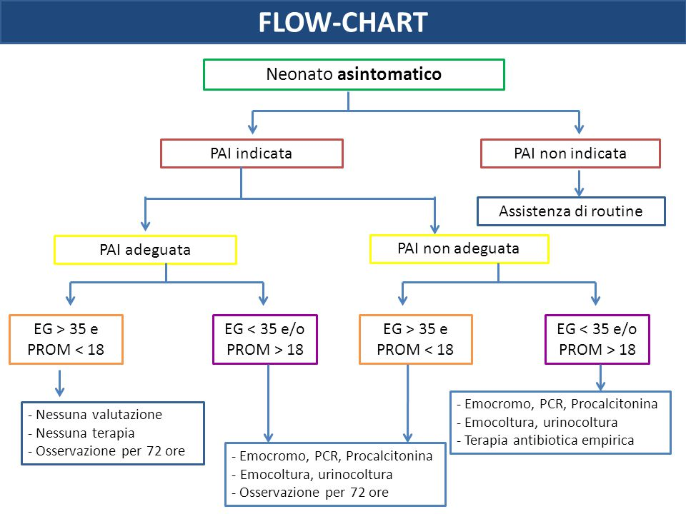 FLOW-CHART Neonato asintomatico PAI indicata PAI non indicata
