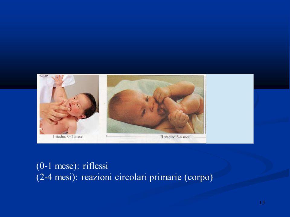 (2-4 mesi): reazioni circolari primarie (corpo)