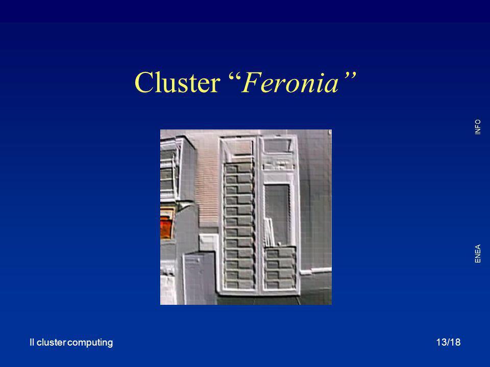 Cluster Feronia Il cluster computing Il Cluster Computing