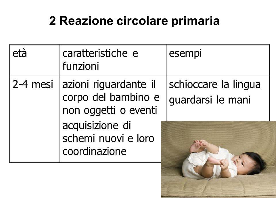 2 Reazione circolare primaria