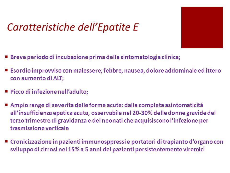Caratteristiche dell'Epatite E