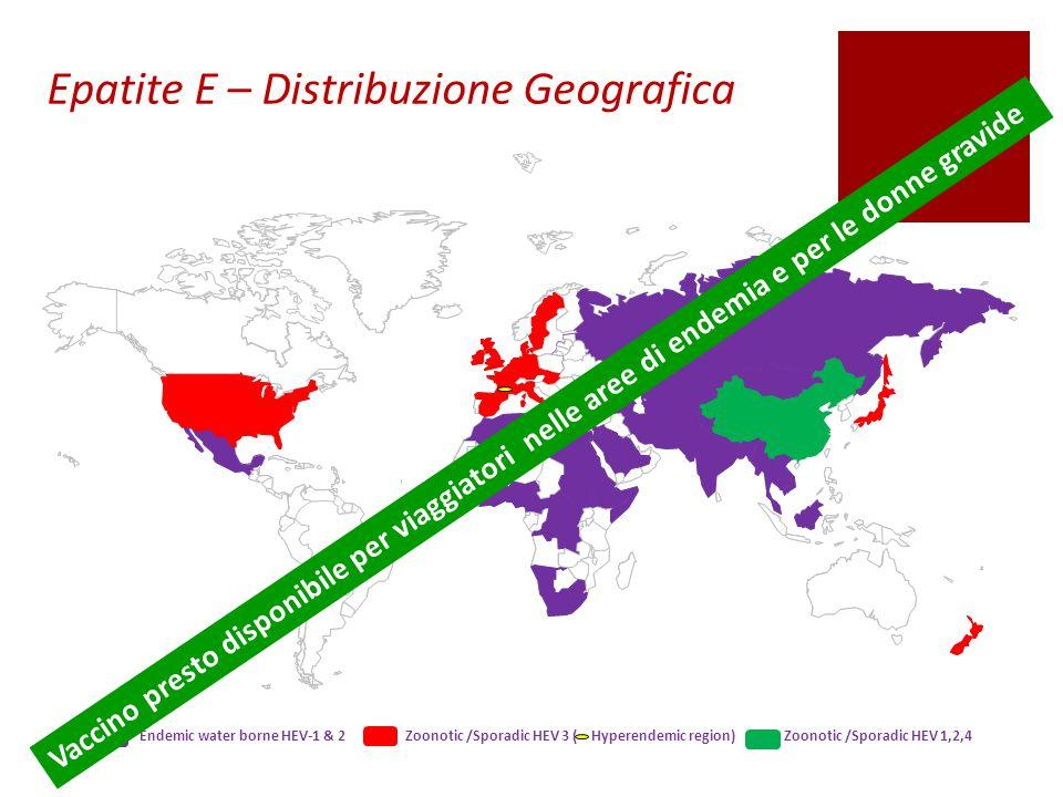 Epatite E – Distribuzione Geografica