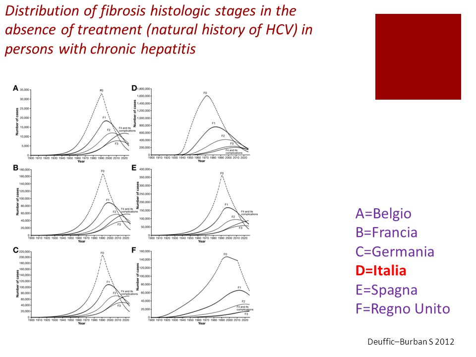 Distribution of fibrosis histologic stages in the absence of treatment (natural history of HCV) in persons with chronic hepatitis