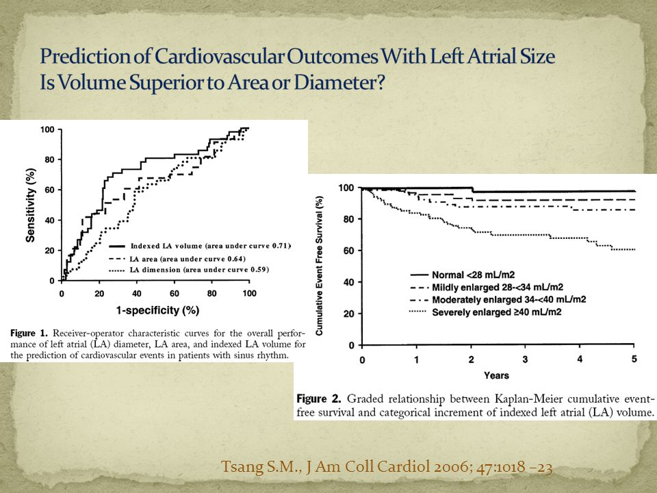 Prediction of Cardiovascular Outcomes With Left Atrial Size Is Volume Superior to Area or Diameter