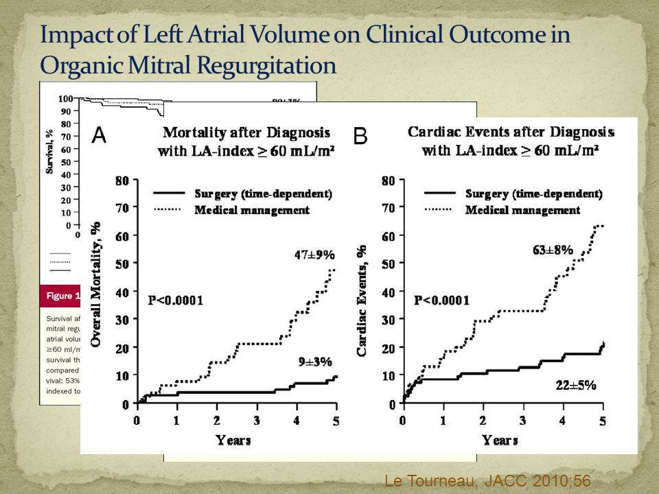 Impact of Left Atrial Volume on Clinical Outcome in Organic Mitral Regurgitation