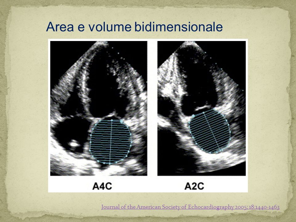 Area e volume bidimensionale