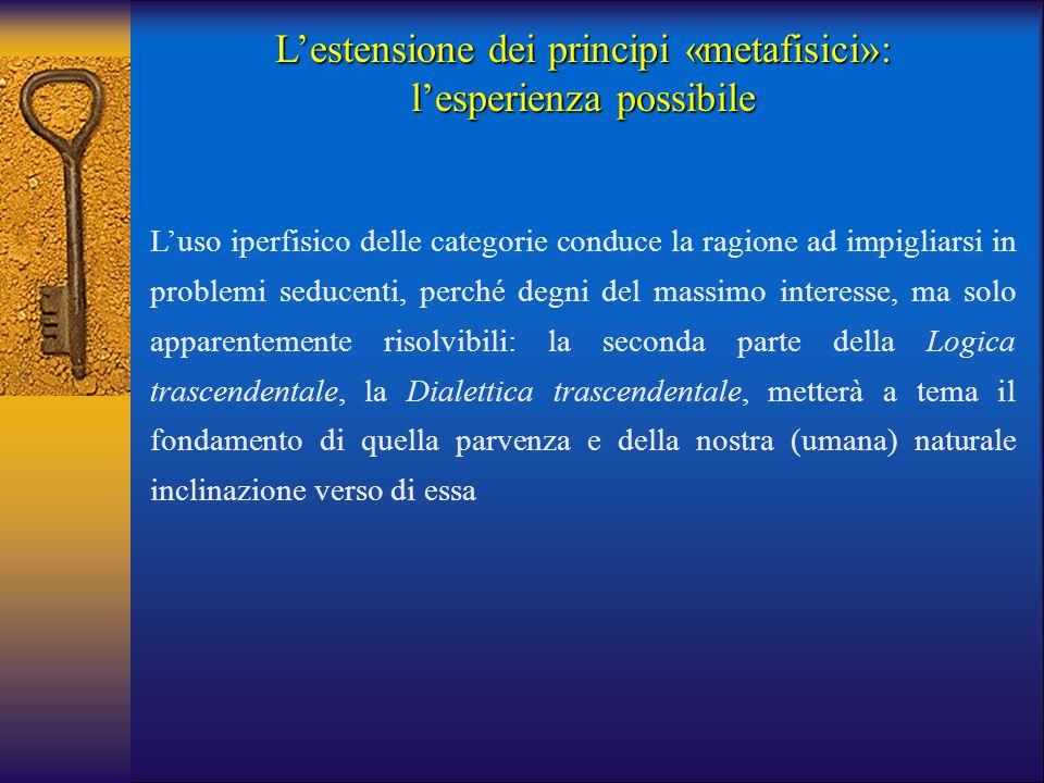 L'estensione dei principi «metafisici»: l'esperienza possibile