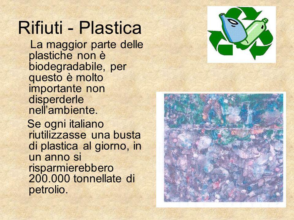 Rifiuti - Plastica La maggior parte delle plastiche non è biodegradabile, per questo è molto importante non disperderle nell'ambiente.
