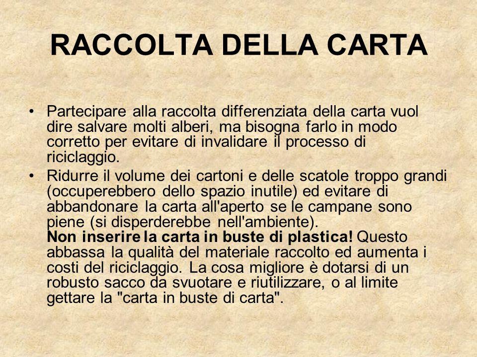 RACCOLTA DELLA CARTA