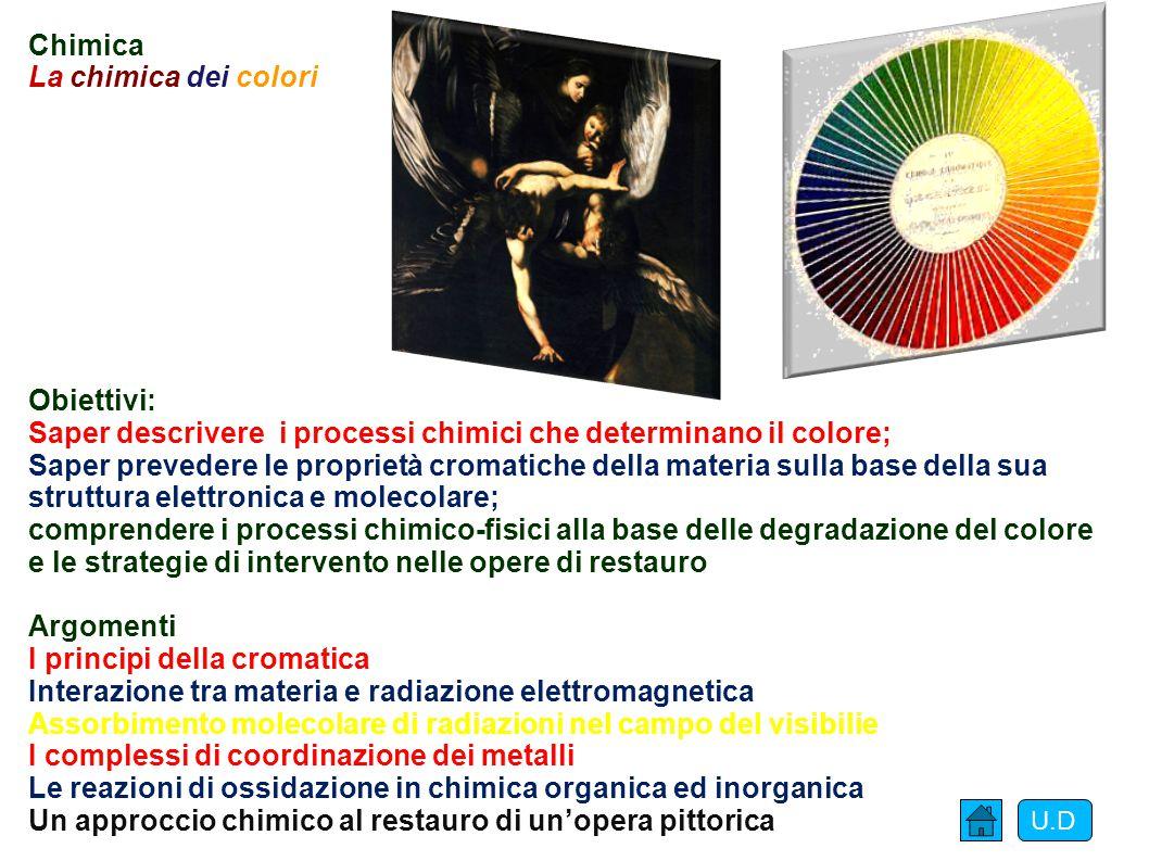 Saper descrivere i processi chimici che determinano il colore;