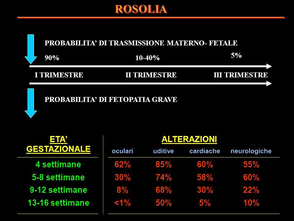 ROSOLIA ETA' GESTAZIONALE ALTERAZIONI 4 settimane 62% 85% 60% 55%