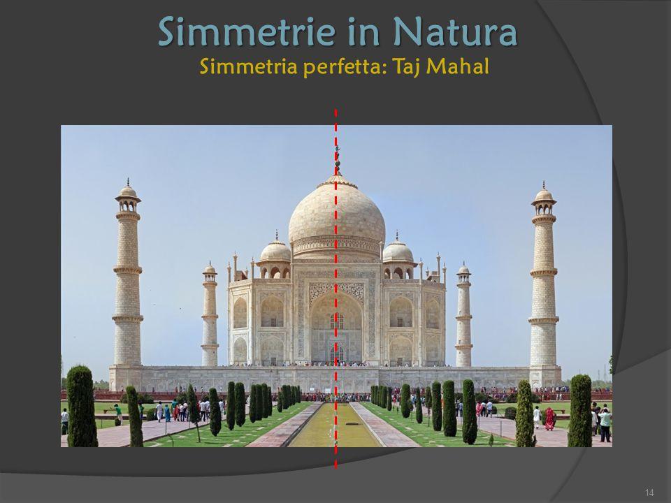 Simmetria perfetta: Taj Mahal