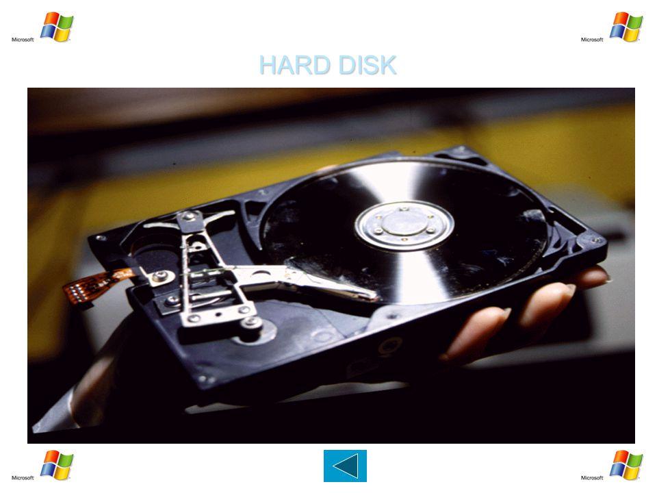 HARD DISK Dispositivo capace di memorizzare migliaia di MB (GB).