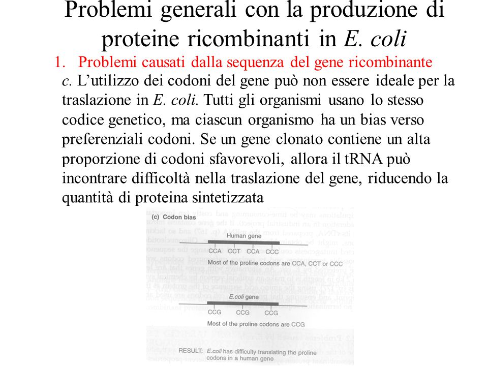 Problemi generali con la produzione di proteine ricombinanti in E. coli