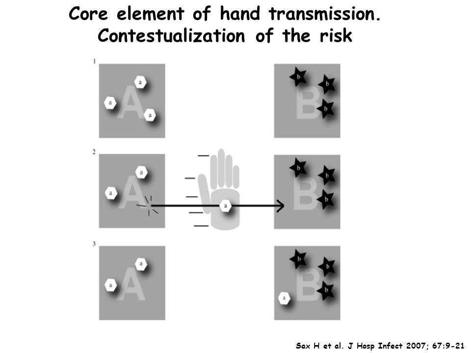 Core element of hand transmission. Contestualization of the risk