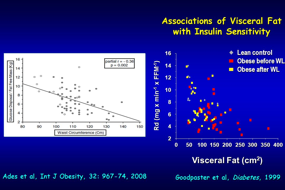 Associations of Visceral Fat with Insulin Sensitivity