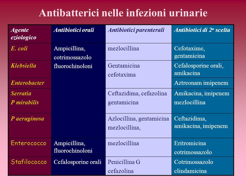 Antibatterici nelle infezioni urinarie