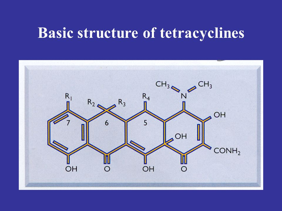 Basic structure of tetracyclines