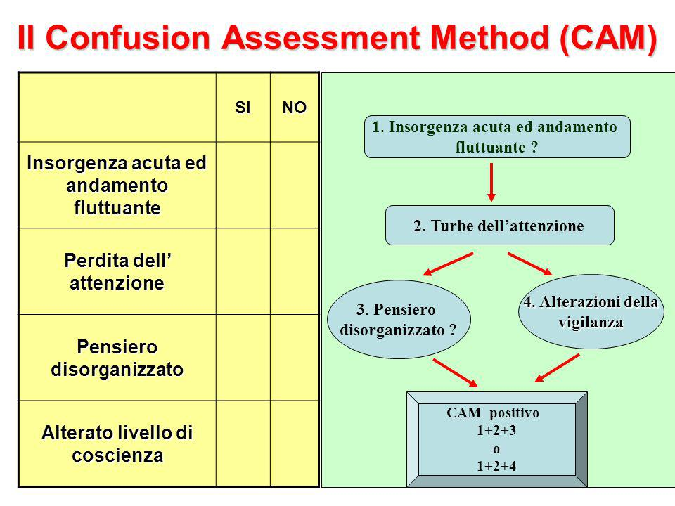 Il Confusion Assessment Method (CAM)