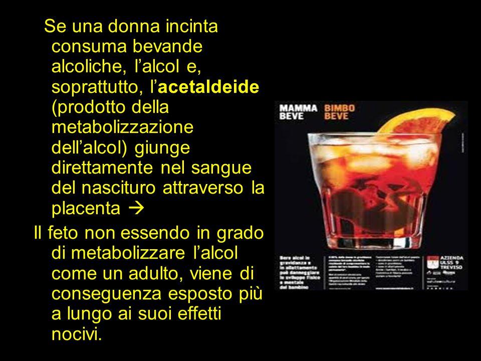 Se una donna incinta consuma bevande alcoliche, l'alcol e, soprattutto, l'acetaldeide (prodotto della metabolizzazione dell'alcol) giunge direttamente nel sangue del nascituro attraverso la placenta 