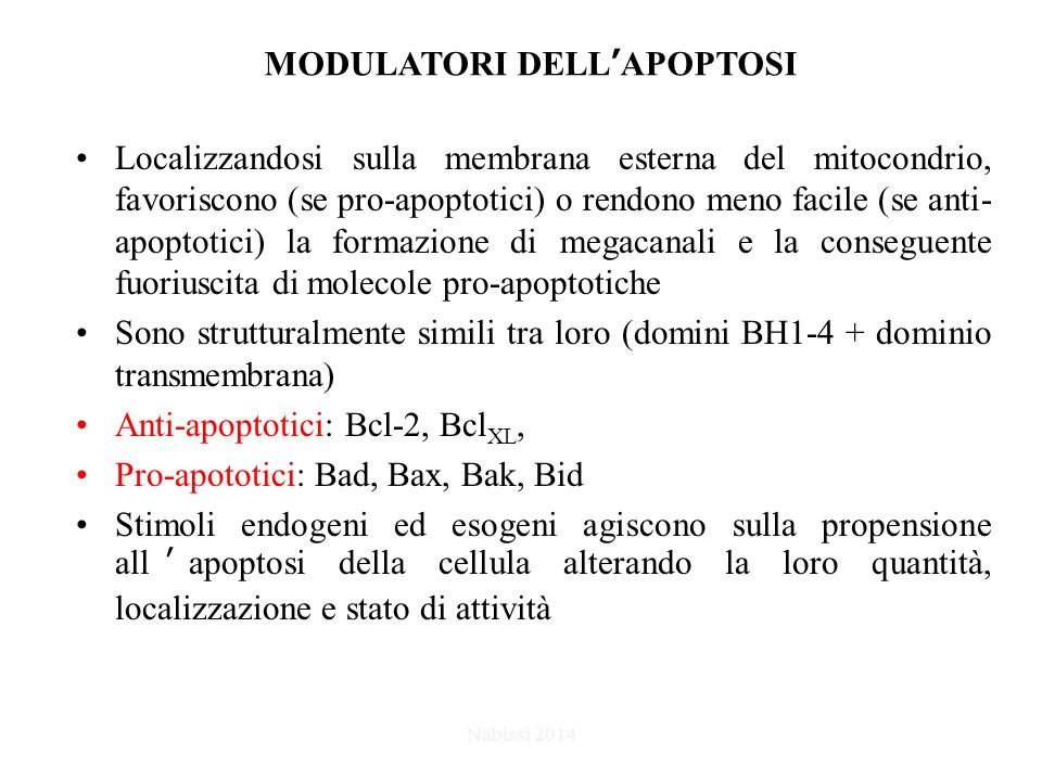 MODULATORI DELL'APOPTOSI