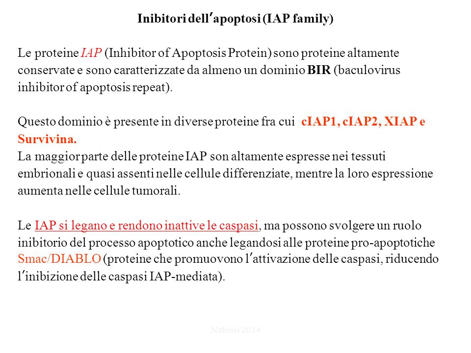 Inibitori dell'apoptosi (IAP family)