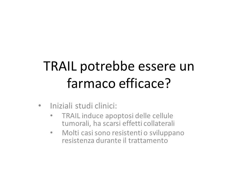 TRAIL potrebbe essere un farmaco efficace