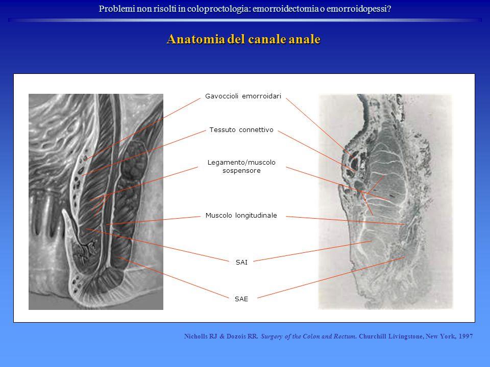 Anatomia del canale anale