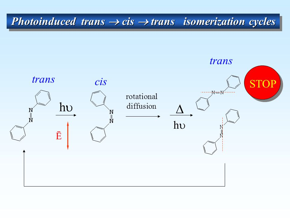 Photoinduced trans  cis  trans isomerization cycles