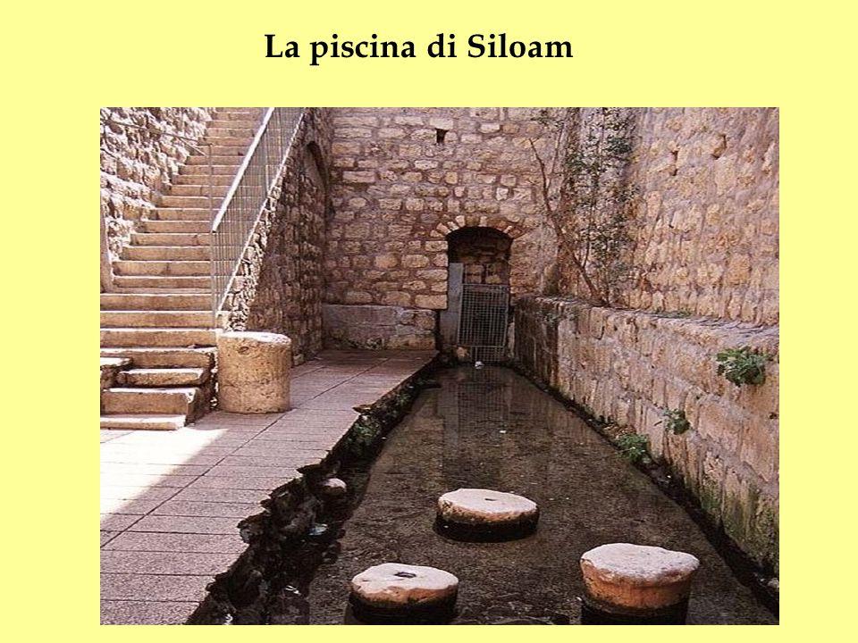 La piscina di Siloam