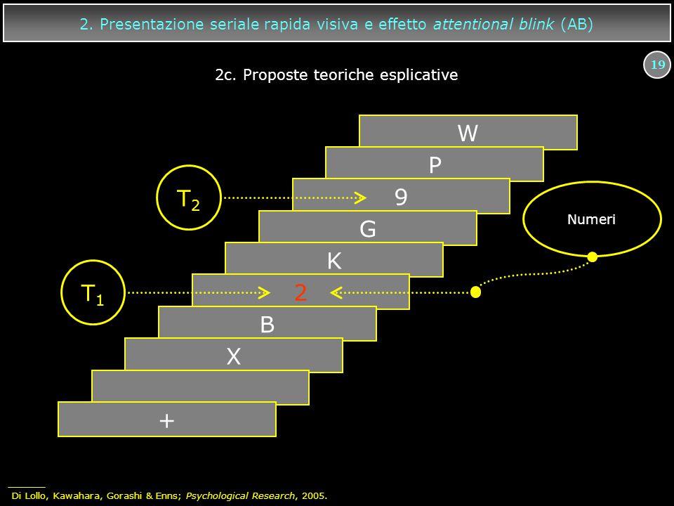 2c. Proposte teoriche esplicative