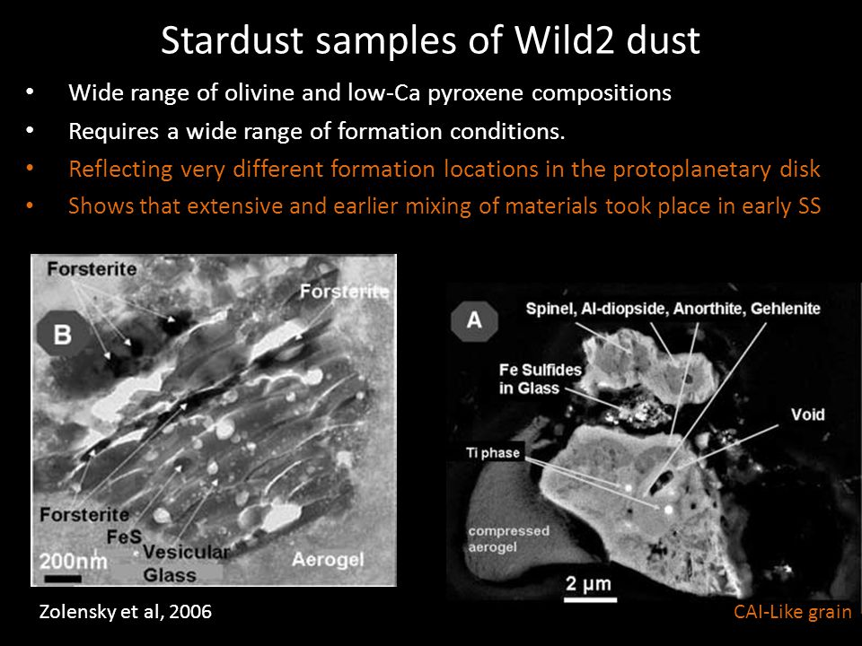 Stardust samples of Wild2 dust
