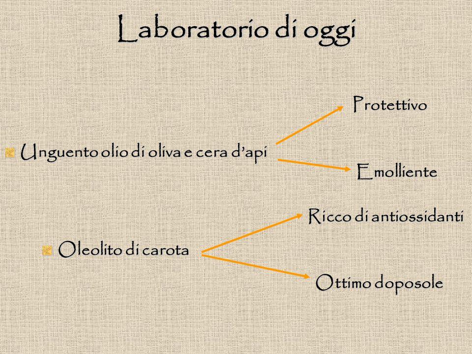Laboratorio di oggi Protettivo Unguento olio di oliva e cera d'api