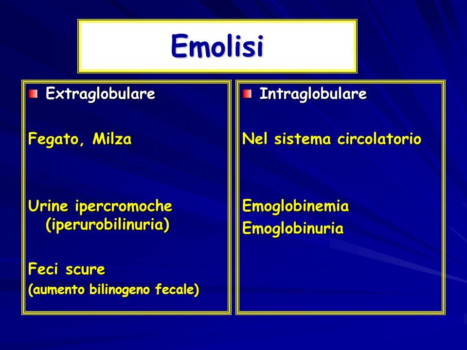 Emolisi Extraglobulare Fegato, Milza