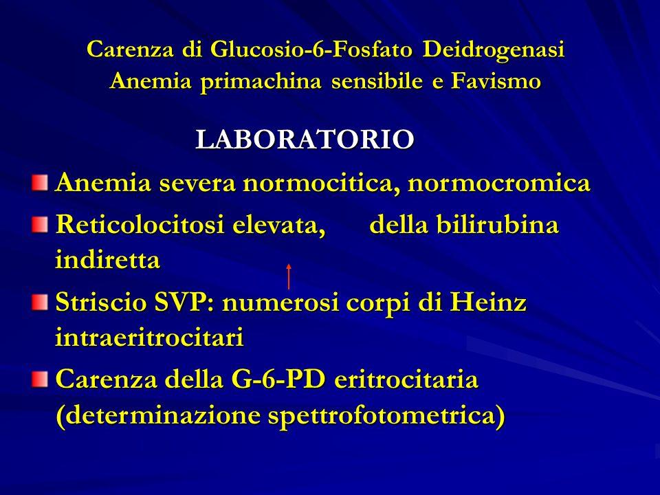 Anemia severa normocitica, normocromica