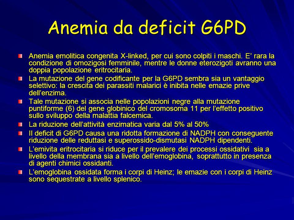 Anemia da deficit G6PD