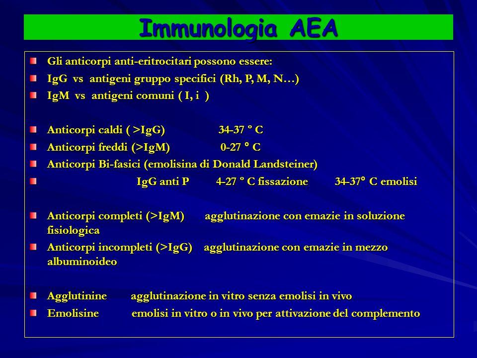 Immunologia AEA Gli anticorpi anti-eritrocitari possono essere: