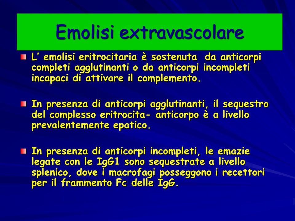 Emolisi extravascolare