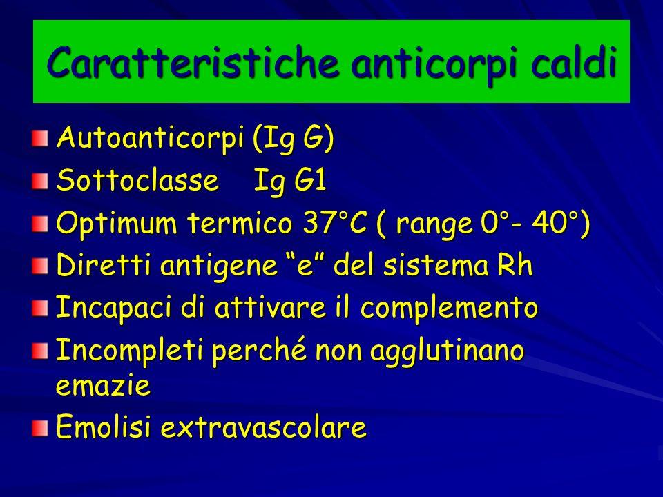 Caratteristiche anticorpi caldi