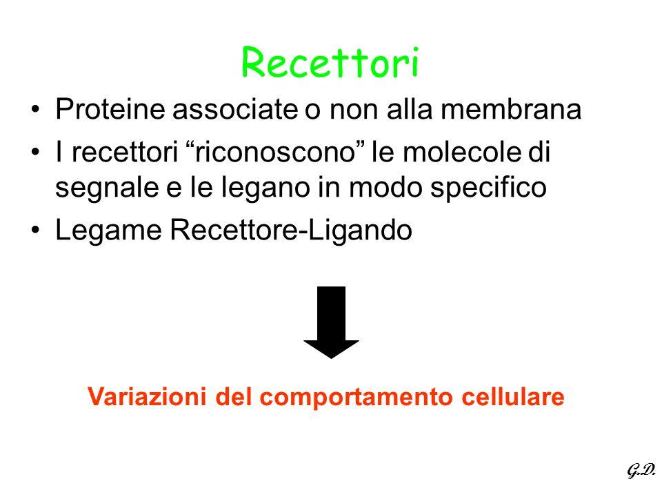Recettori Proteine associate o non alla membrana