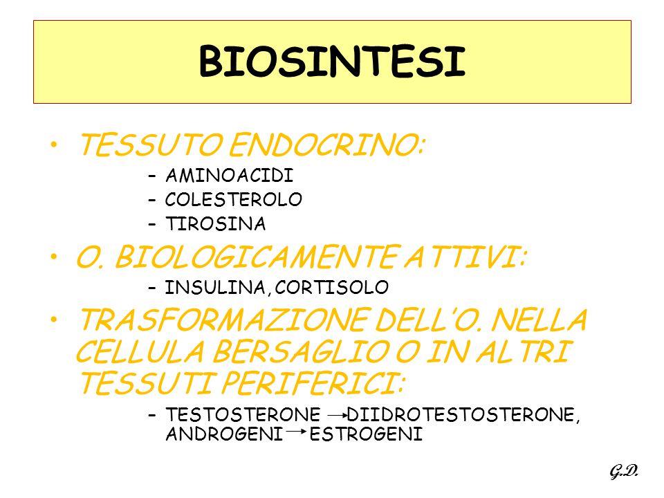 BIOSINTESI TESSUTO ENDOCRINO: O. BIOLOGICAMENTE ATTIVI: