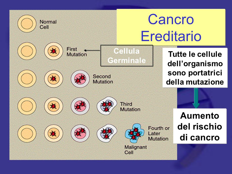 Cancro Ereditario Aumento del rischio di cancro Cellula Germinale