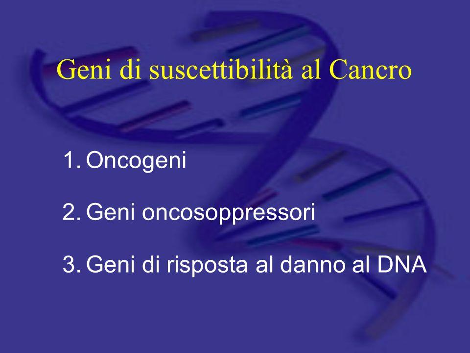 Geni di suscettibilità al Cancro