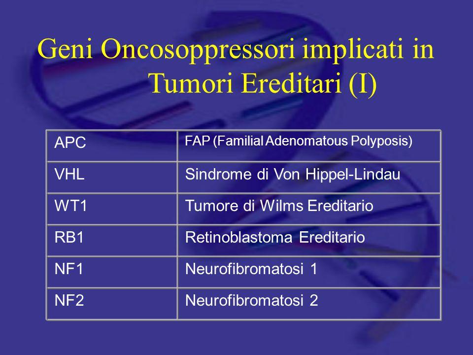 Geni Oncosoppressori implicati in Tumori Ereditari (I)