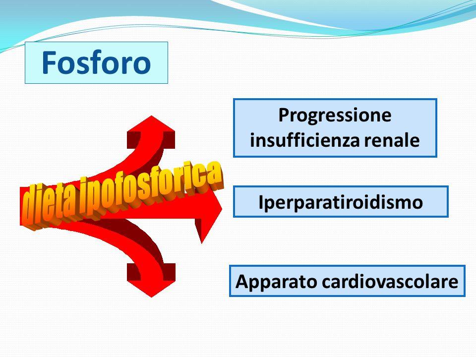 Progressione insufficienza renale Apparato cardiovascolare