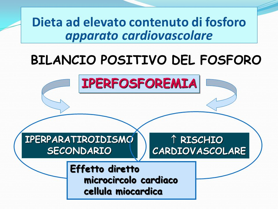 Dieta ad elevato contenuto di fosforo apparato cardiovascolare
