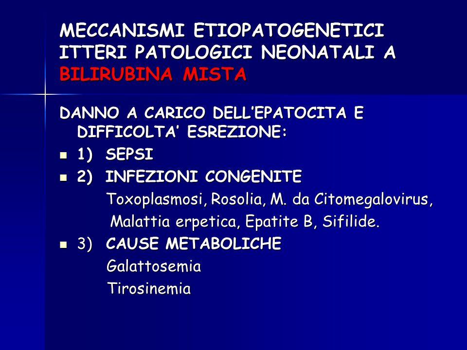 MECCANISMI ETIOPATOGENETICI ITTERI PATOLOGICI NEONATALI A BILIRUBINA MISTA