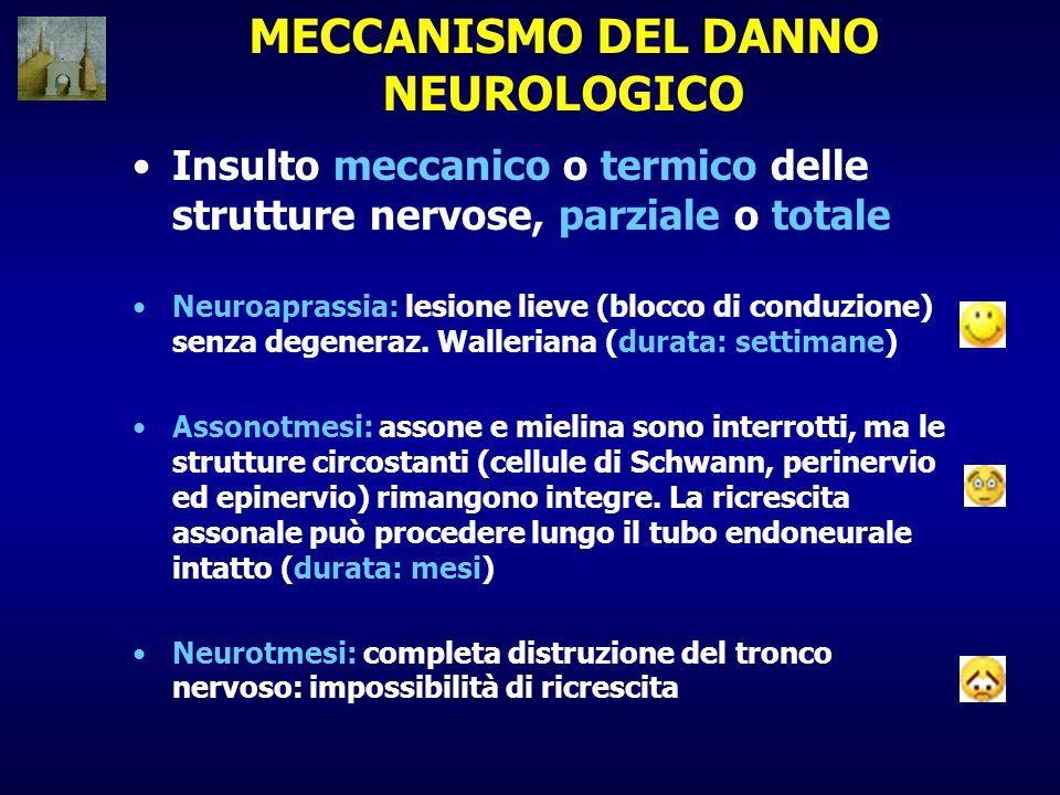 MECCANISMO DEL DANNO NEUROLOGICO