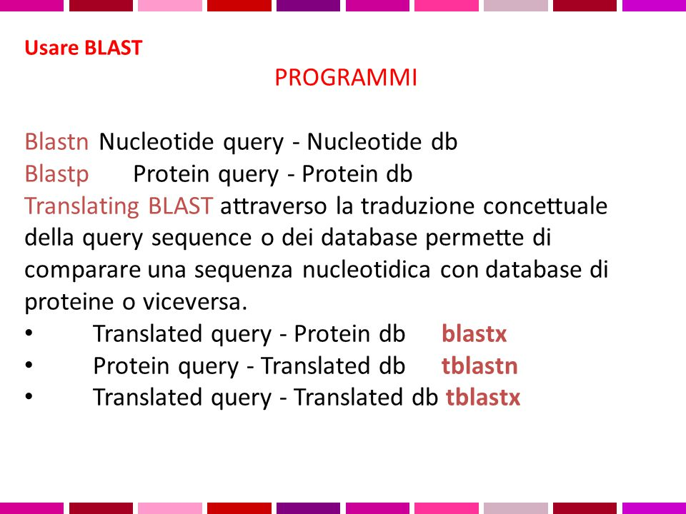Blastn Nucleotide query - Nucleotide db